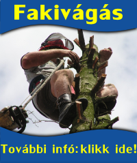 fakivagas2.png