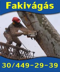 fakivagas1